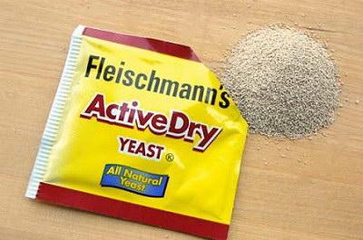 Men nở (yeast)