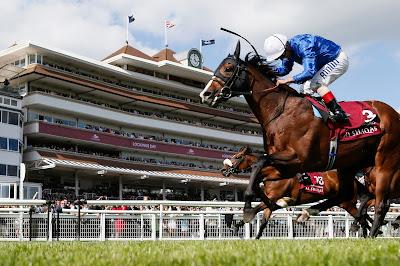 Newbury Horse Racing