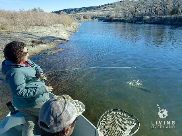 Sport Fishing, American Angler, Salt Water Sportsman, Field & Stream, Outdoor Life, Sporting Journal, L.L. Bean