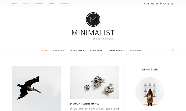 Minimalist Türkçe Blogger Teması