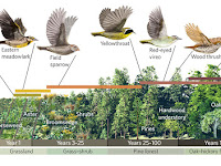 Habitat dan Relung Ekologi