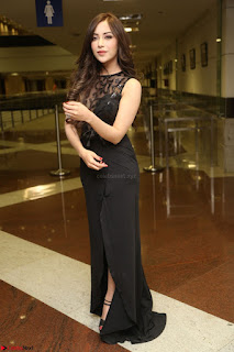 Angela Krislinzki in Transparent Black Gown at Rogue Movie Teaser Launch 1st March 2017 006.JPG