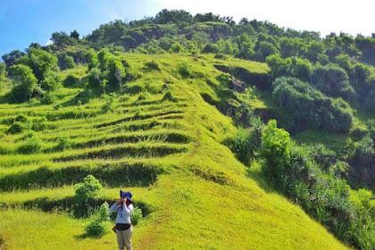 Inilah 75 Kawasan Wisata Gres Dan Hits Di Gunung Kidul Jogja Yang Wajib Dikunjungi