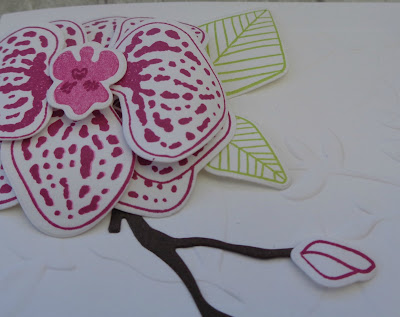 Craftyduckydoodah!, #stampinupuk, #lovemyjob, Climbing Orchid, SBTD Blog Hop, Stampin' Up! UK Independent  Demonstrator Susan Simpson, Supplies available 24/7 from my online store,