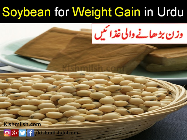Wazan Badhane Ka Tarika in Urdu, Jism Ko Mota Karne wali gaza, Foods for Weight Gain in Urdu, weight gain food tips in urdu, weight gain tips in urdu, Health Tips In Urdu, Quick Weight Gain Tips in Urdu, Urdu Health Tips, Urdu Tips, Desi Totkay, Desi Ilaj, how to gain weight In Urdu,