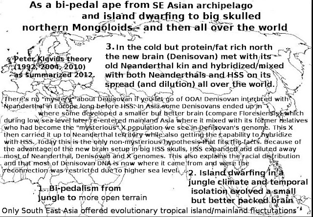 SE Asia offered jungle dwarfed skulls and Siberia big cold and fat adapted skulls.