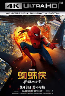 Spider-Man de regreso a casa (2017) 4K UHD HDR Latino