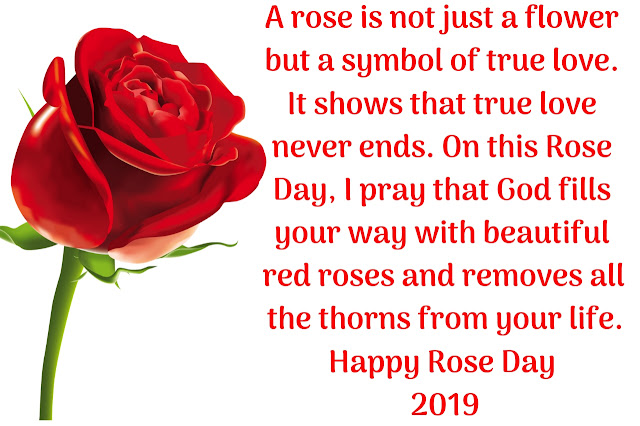 A rose is not just a flower but a symbol of true love. It shows that true love never ends. On this Rose Day, I pray that God fills your way with beautiful red roses and removes all the thorns from your life.