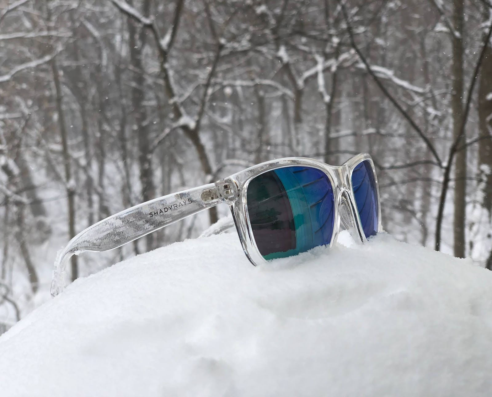 42794feabb2 So those are the Shady Rays Signature Series sunglasses - a good looking  frame shape with multiple lens choices and crisp vision.