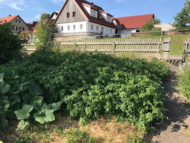 sonniger Garten am Dorfweiher (c) by Joachim Wenk