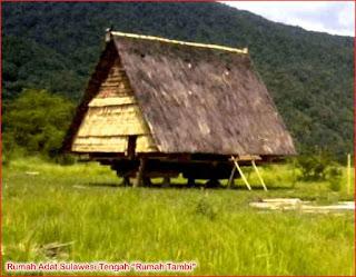 Gambar-Rumah-Adat-Sulawesi-Tengah