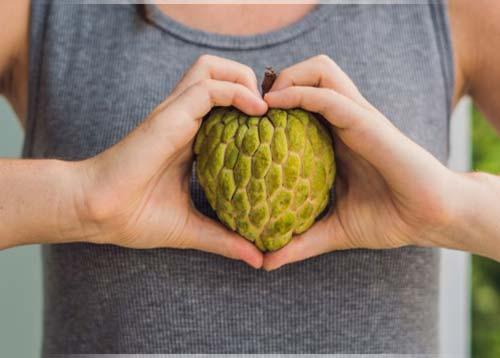 فاكهة القشطة - فاكهة الشيريمويا
