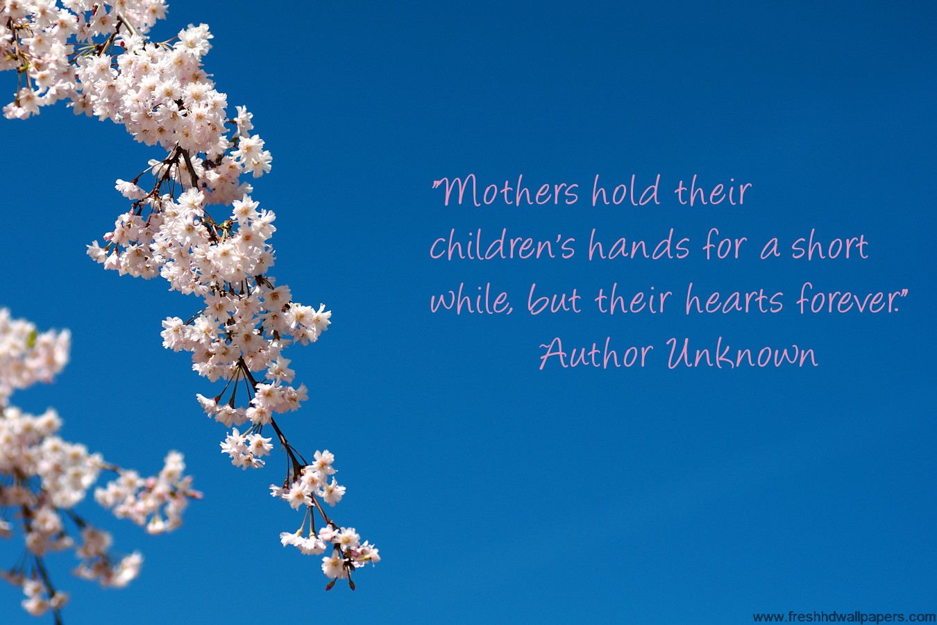 Mothers day 2013 special quotes