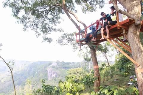 rumah pohon bukit kendeng Curugsewu