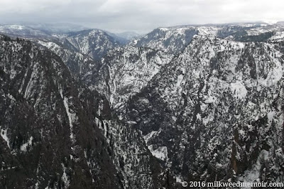 Snow coats the canyon sides under heavy gray clouds at Black Canyon of the Gunnison National Park, Colorado