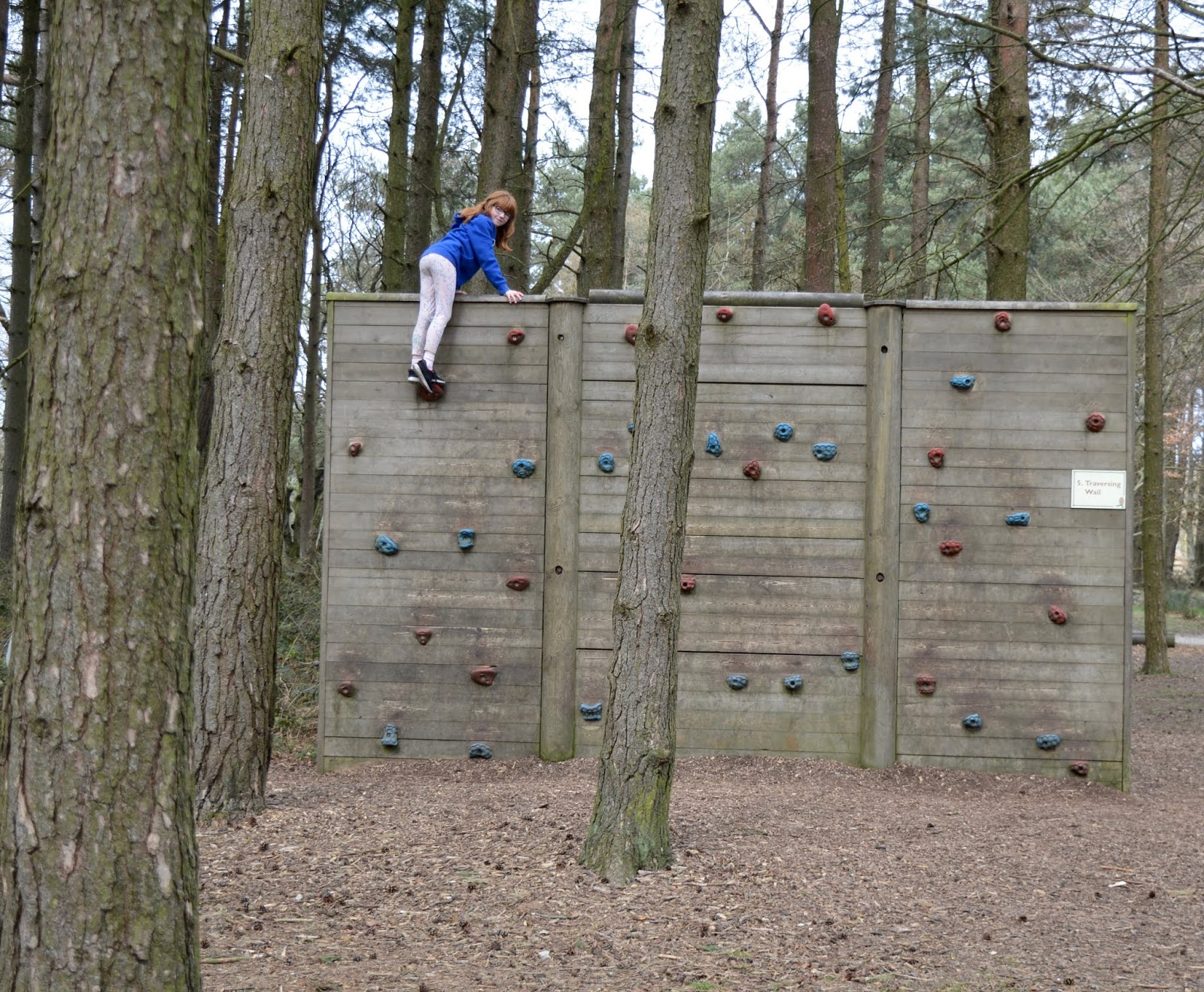 A Review of Darwin Forest & The Peak District with Tweens  - climbing wall