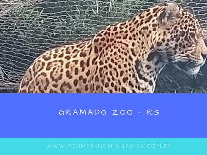 Gramado Zoo - RS