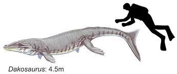 dakosaurus mahluk dari jaman prasejarah yang mengerikan dan menyeramkan