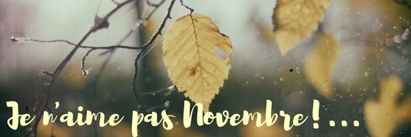 Je n'aime pas Novembre!...