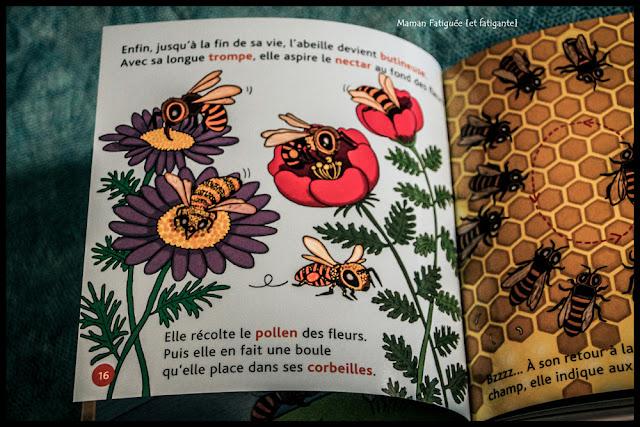 ptits docs abeilles