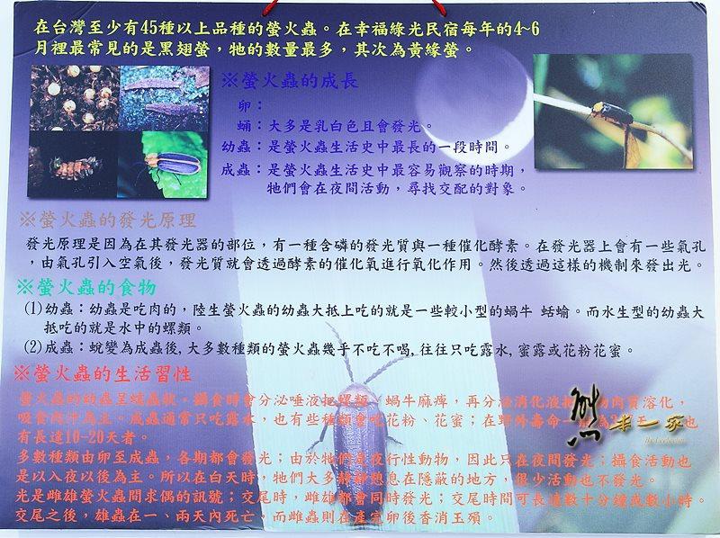 苗栗南庄住宿|幸福綠光民宿