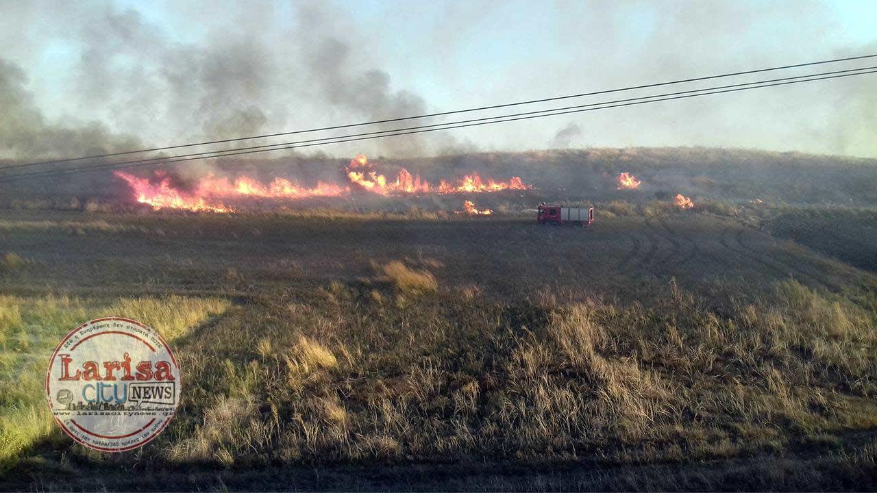 Συναγερμός στην Πυροσβεστική για φωτιά έξω από το ANIMUS στη Λάρισα