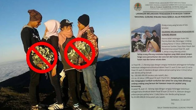 Kebanyakan Micin! Tak Hanya Cabut Edelweis, Remaja Ini Juga Unggah Foto-foto Memalukan di Medsos
