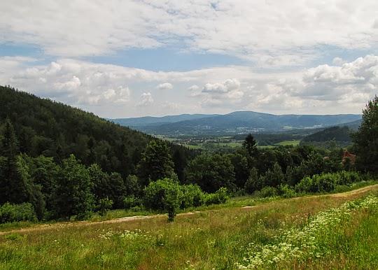 Dolina Dzikiego Potoku.