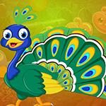 G4K Graceful Peacock Escape