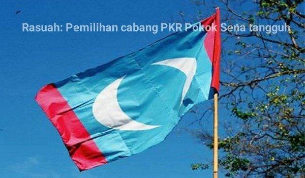 Rasuah: Pemilihan cabang PKR Pokok Sena tangguh