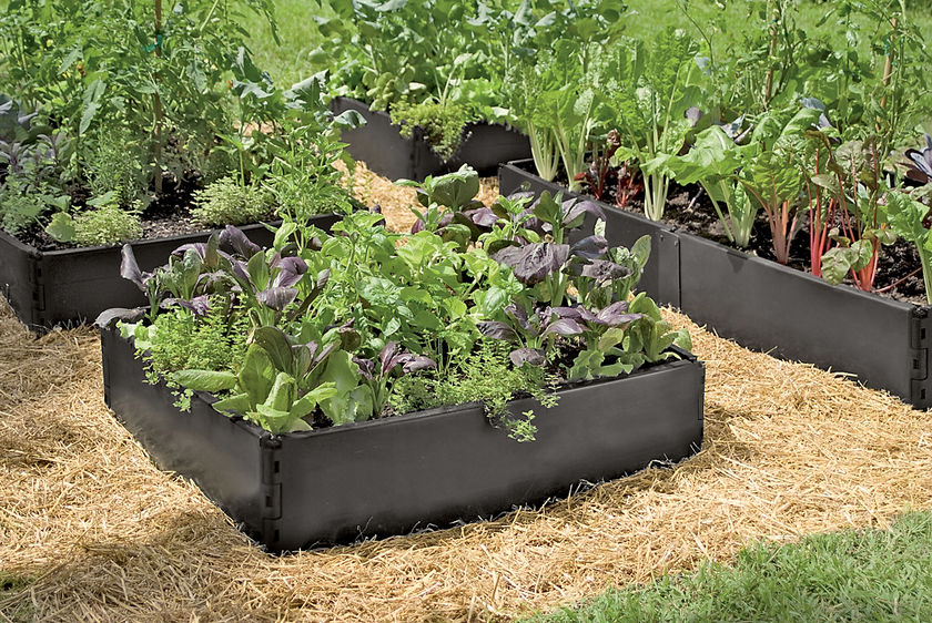 Canadian Country Woman Raised Garden Beds