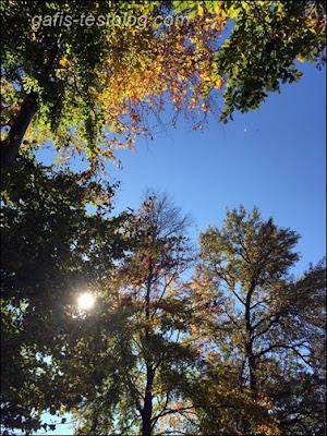 Schönes Oktoberwetter
