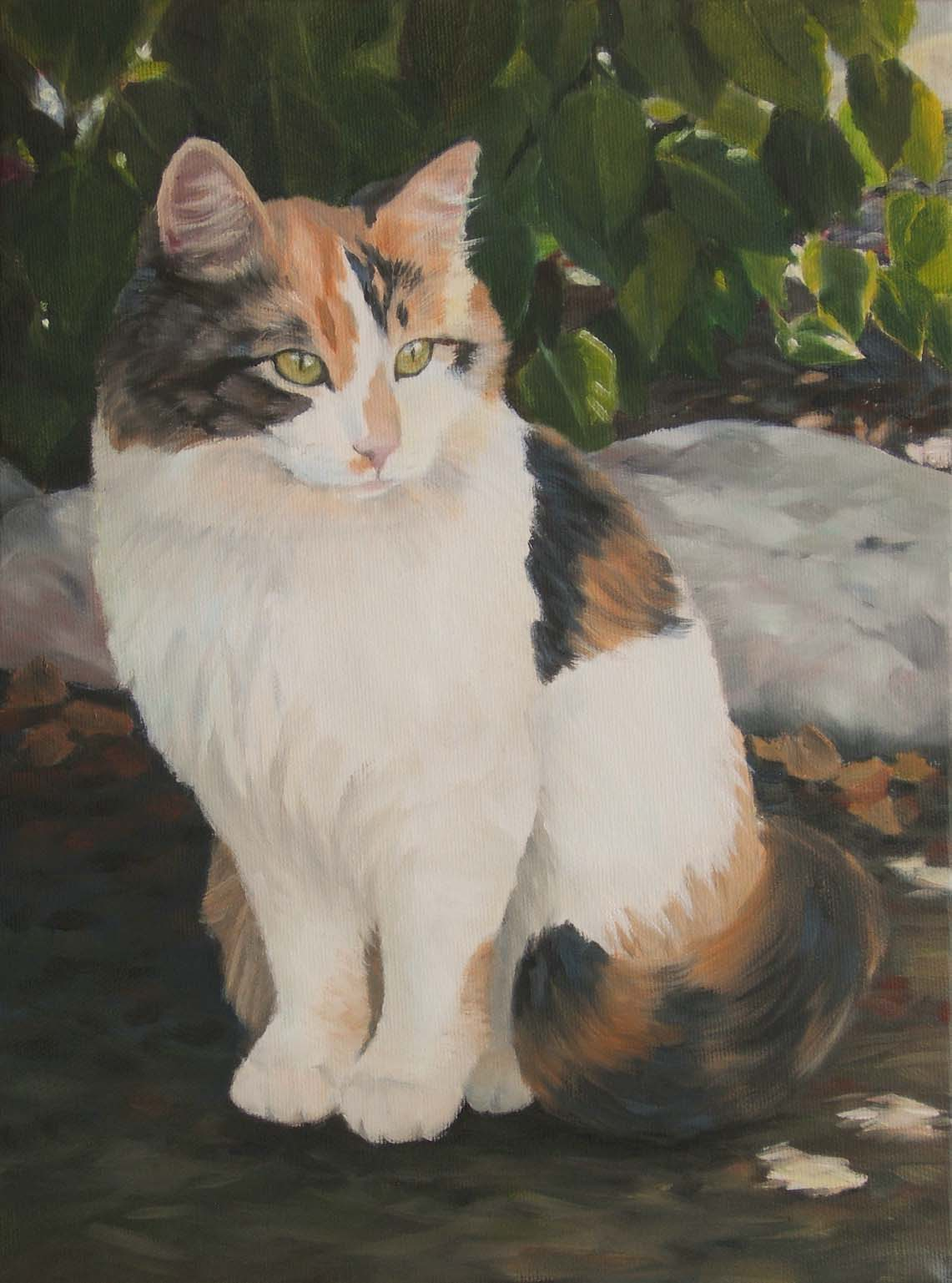 """Petra"" 12""x 9"" oil on canvas, family cat pet portrait ©2008 Tina M Welter"