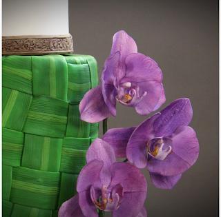 Orchidées et Bois Sculpté - Oana Butto de Cakes by Oana