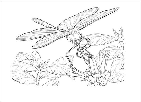 Tranh tô màu con chuồn chuồn và bông hoa