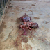 New born Baby with Placenta still attached abandoned hours after birth