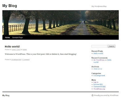 WordPress-Theme-Installation-1