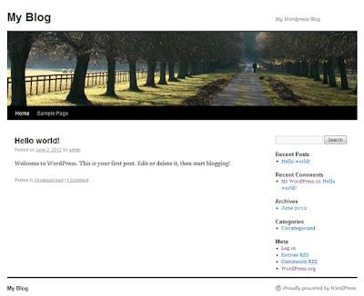 WordPress-Theme-Installation-1