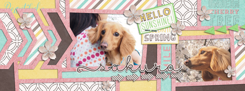 FB-COVER Spring-2015