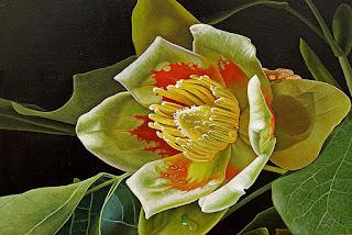 bodegones-oleo-flores