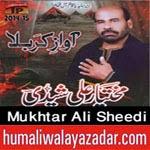 http://www.humaliwalayazadar.com/2014/10/mukhtar-ali-sheedi-nohay-2015.html