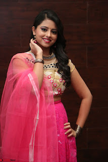 Geethanjali sizzles in Pink at Mixture Potlam Movie Audio Launch 019.JPG
