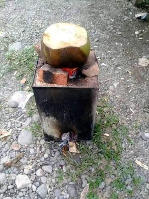 manfaat kelapa bakar
