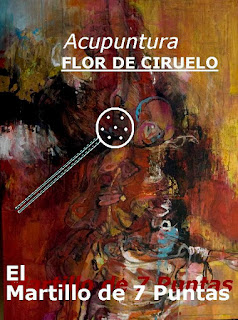 https://www.amazon.es/ACUPUNTURA-FLOR-CIRUELO-Martillo-Puntas-ebook/dp/B01D0G7IPU