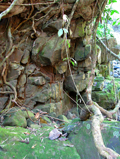 Birthing place for rocks on the river bank