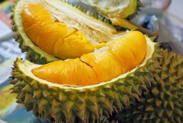 Bolehkah ibu hamil makan durian