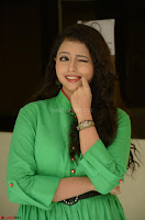 Geethanjali in Green Dress at Mixture Potlam Movie Pressmeet March 2017 057.JPG