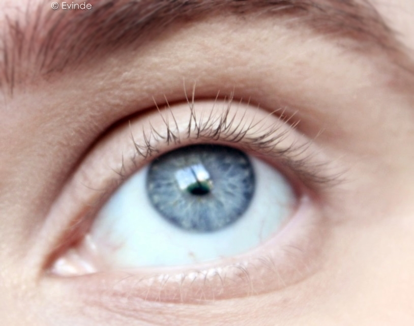 Realash Eyelash Enhancing Serum Review Comparison Evindes