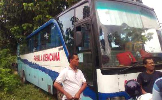 Merinding! Bus ini Masuk Alam Gaib Dipandu Raja Makhluk Halus Hutan Blora