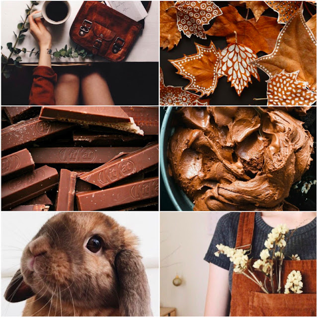 Brown Feed Inspo